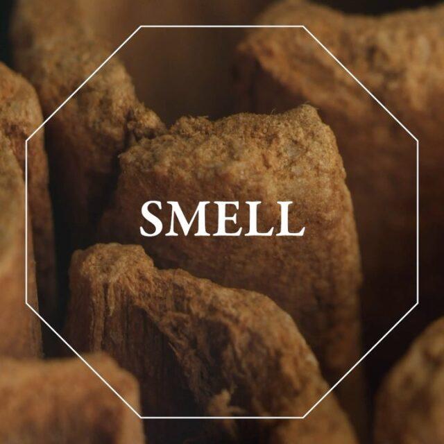 C'è quel profumo che risveglia i ricordi. Il pane caldo della mattina, l'erba appena tagliata, il caffè caldo, i limoni appena colti. Qual è il profumo dei tuoi ricordi?