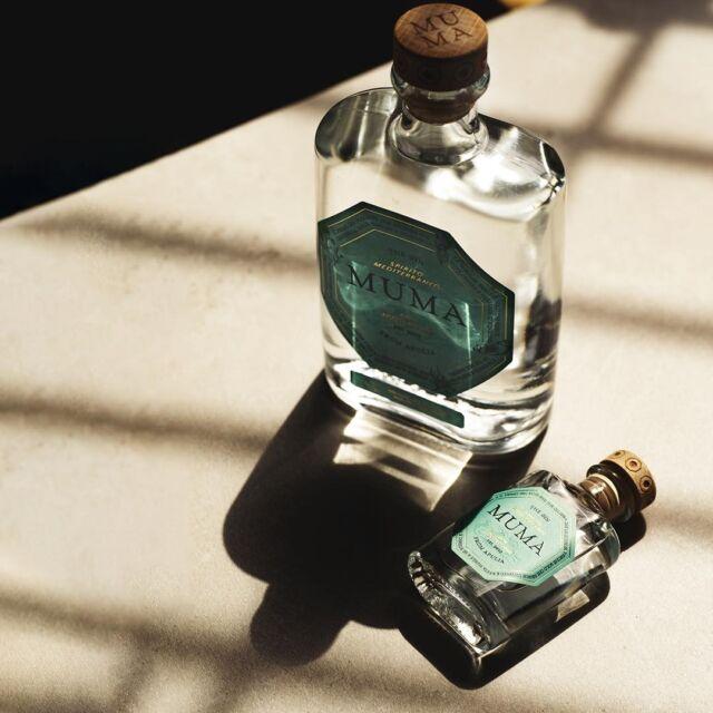 Nei pomeriggi così caldi, quando la luce passa a fatica dagli occhi della mia persiana, è lì che la rivedo la tua sagoma, la tua ombra, mi lecco le labbra e sei ancora qui.  #gin #gintonic #bar #cocktail #instagood #aperitivo #cocktailbar #ginlovers #happyhour #italia #pugliagram #weareinpuglia #mumamoments #igerspuglia